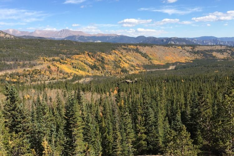 Fall in Rocky Mountain National Park