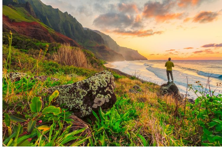Person on Hawaii at sunset